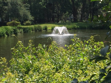 23-fountain-in-lagoon